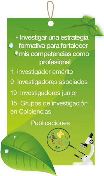 Investigar1.png